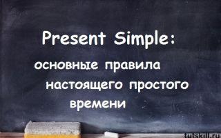 Present Simple: основные правила настоящего простого времени