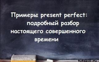 Примеры present perfect: подробный разбор настоящего совершенного времени