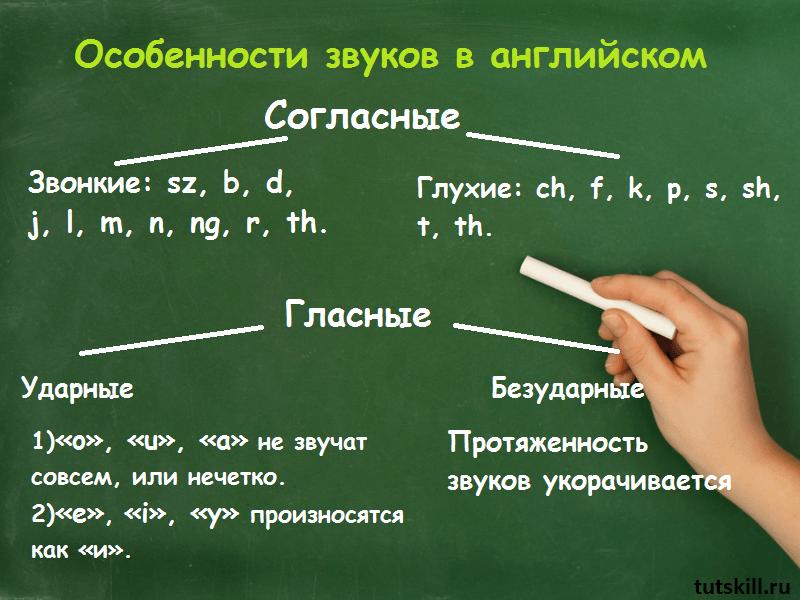 Гласные буквы в английском фото