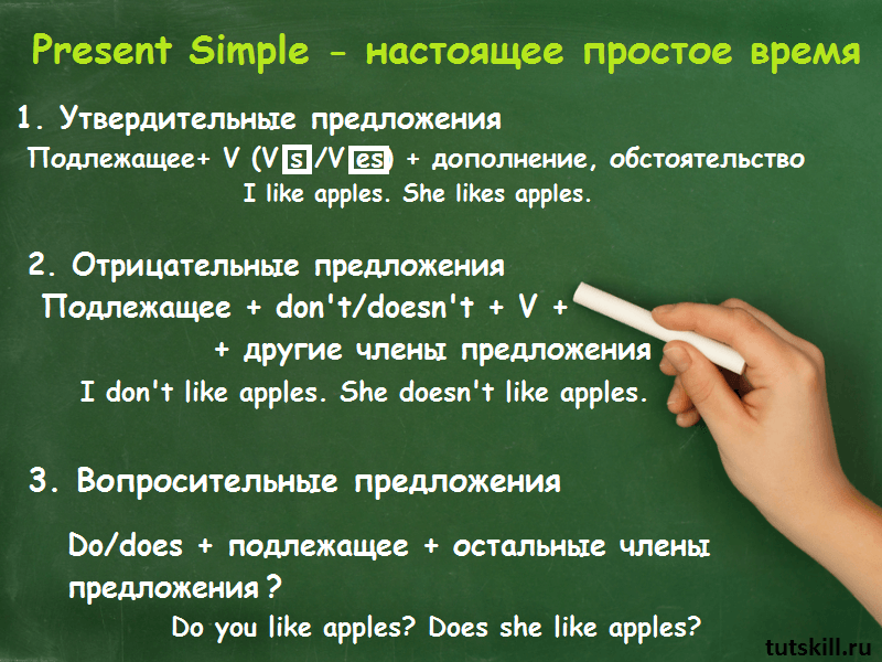 Present Simple фото