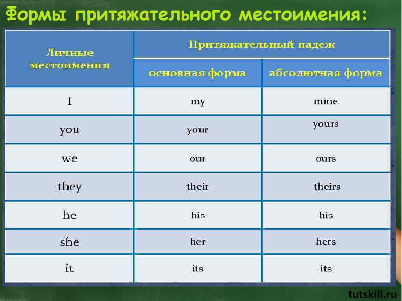 Притяжательные местоимения в английской речи